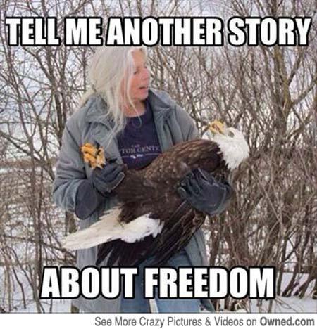 Rockabye Birdie, www.crowdink.com