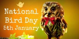 National Bird's Day, crowdink, crowd ink, crowdink.com