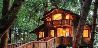 Tree House, home, property, home decor, nature, environment, cool houses, crowdink.com, crowdink.com.au, crowd ink, crowdink