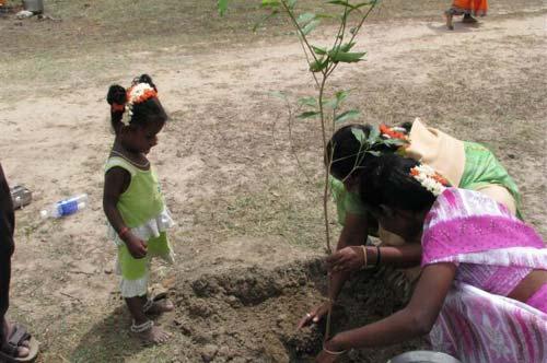 Girls Planting Trees [image source: thescienceexplorer.com], crowd ink, crowdink, crowdink.com, crowdink.com.au