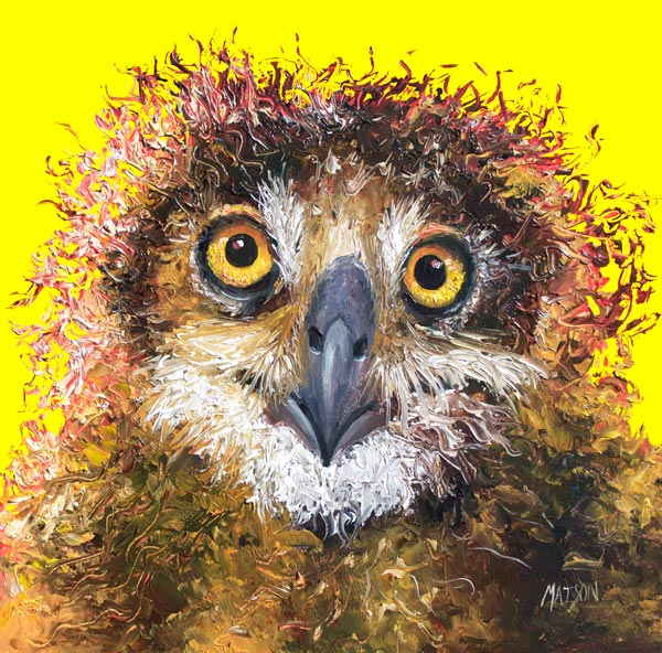 Owl Painting on Yellow Background by Jan Matson, crowd ink, crowdink, crowdink.com, crowdink.com.au