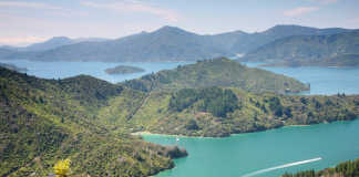 Queen Charlotte Track, New Zealand [image source: journeypacific.com], crowd ink, crowdink, crowdink.com, crowdink.com.au