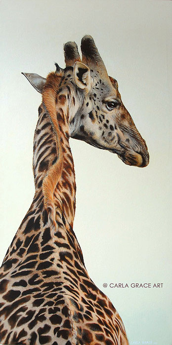 Alfred the Giraffe, Acrylic on Canvas, by Carla Grace, crowd ink, crowdink, crowdink.com, crowdink.com.au