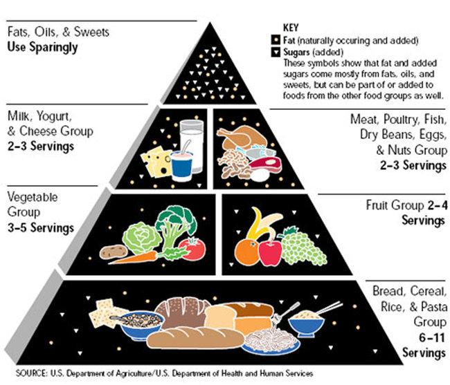 Food Pyramid [image source: US Dept. of Agriculture], crowd ink, crowdink, crowdink.com, crowdink.com.au