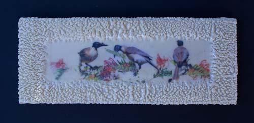 Noisy Friar Birds 9 by Gayle Reichelt, crowd ink, crowdink, crowdink.com, crowdink.com.au