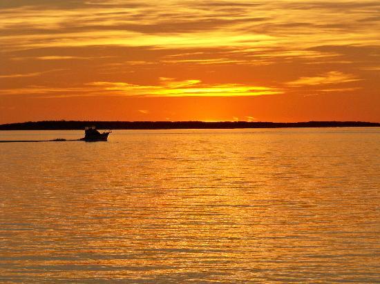 Shelter Island Sunsets [image source: tripadvisor.com], crowd ink, crowdink, crowdink.com, crowdink.com.au