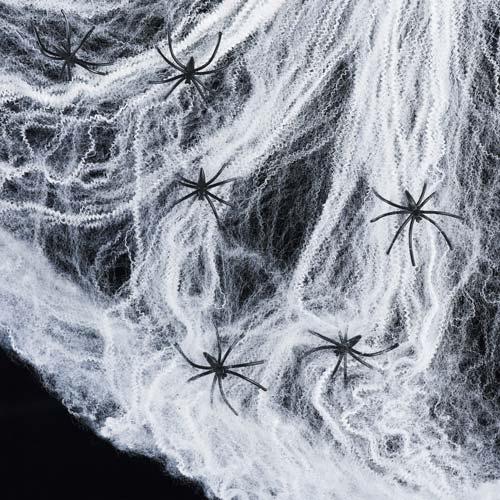 Spider Web, crowdink.com, crowdink.com.au, crowd ink, crowdink