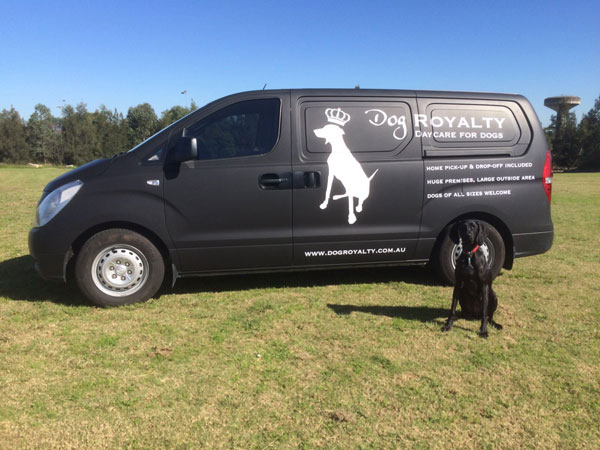 Dog Royalty offers a home pick-up and drop-off service for all dogs in air-conditioned luxury, crowdink.com.au, crowdink.com, crowd ink, crowdink