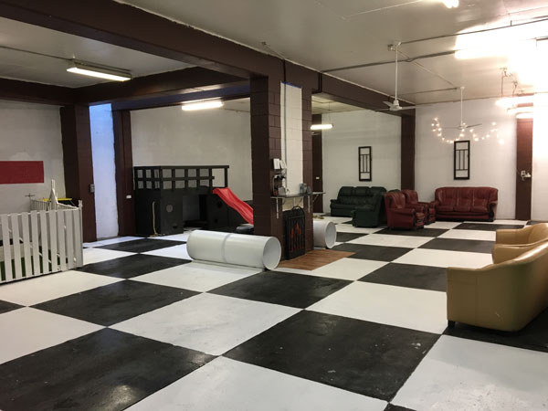 This is the Ballroom – one of Dog Royalty's many rooms with heaps of space and features for dogs to run, play and relax in, crowdink.com, crowdink.com.au, crowd ink, crowdink