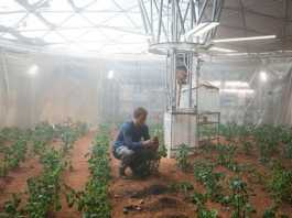 Matt Damon in The Martian Movie (Image Source: humanmars.net), crowdink.com, crowdink.com.au, crowd ink, crowdink