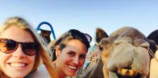Mulgas Adventures in Alice Springs, crowdink.com, crowdink.com.au, crowd ink, crowdink, travel, adventure, alice springs, australia