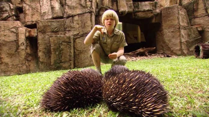Robert Irwin crowdink.com, crowdink.com.au, crowd ink, crowdink