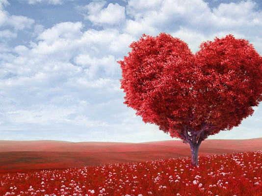 Valentines Day crowdink.com, crowdink.com.au, crowd ink, crowdink