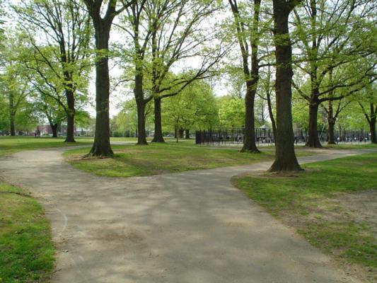 Parks Week crowdink.com, crowdink.com.au, crowd ink, crowdink