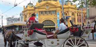 Melbourne Horse carriages ban (Image Source: abc)