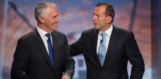 Turnbull vs Abbott, crowdink.com, crowdink.com.au, crowd ink, crowdink