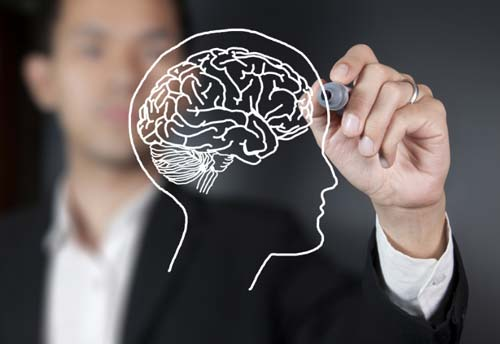 Brain Training, crowdink.com, crowdink.com.au, crowd ink, crowdink