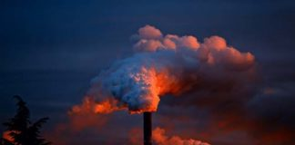 Pollution and Autism, crowdink.com, crowdink.com.au, crowd ink, crowdink