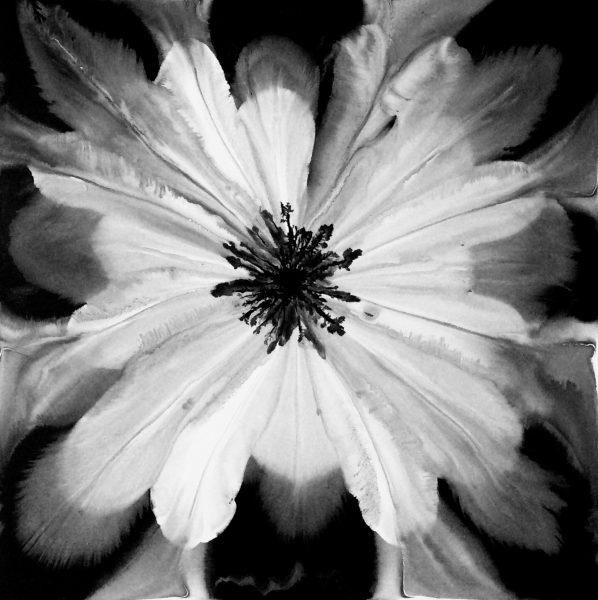 Black Petal – Lara Accarias