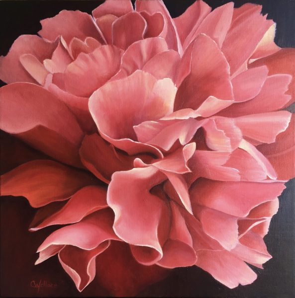 Peony Up Close by Catherine Wallace