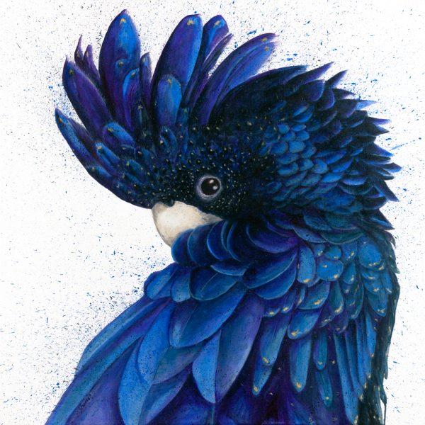 Black & Blue (Ltd Ed Print) by Shani White