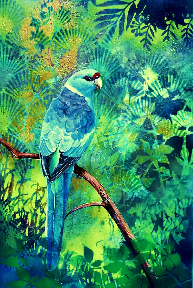 Secluded Glade – Ring necked parrot by Susan Skuse