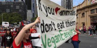 Vegan Protestors (Image Source- bigsmoke)
