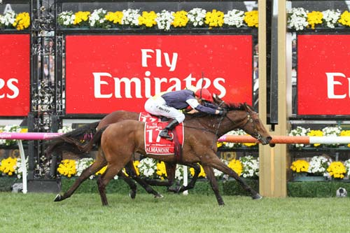 Almandin Melbourne Cup (Image Source: Justhorseracing), crowdink.com, crowdink.com.au, crowd ink, crowdink
