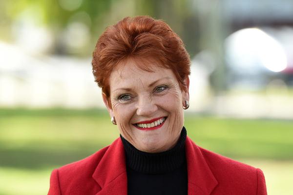 Pauline Hanson crowdink.com, crowdink.com.au, crowdink, crowd ink