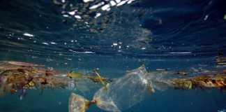 Plastic Waste (Image Source: ABC), crowdink.com., crowdink.com.au, crowd ink, crowdink