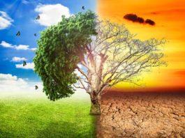 Climate Change, crowdink.com, crowdink.com.au, crowd ink, crowdink