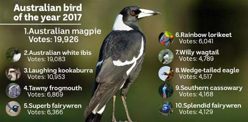 Australian Bird of The Year (Birdlife Australia)