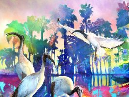 Paradise Regained by Susan Skuse