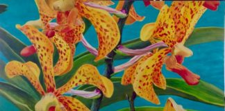 Yellow and Red Orchid by Lorraine Abernethy